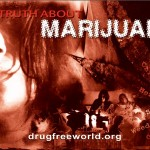 Truth About Drugs Documentary Marijuana