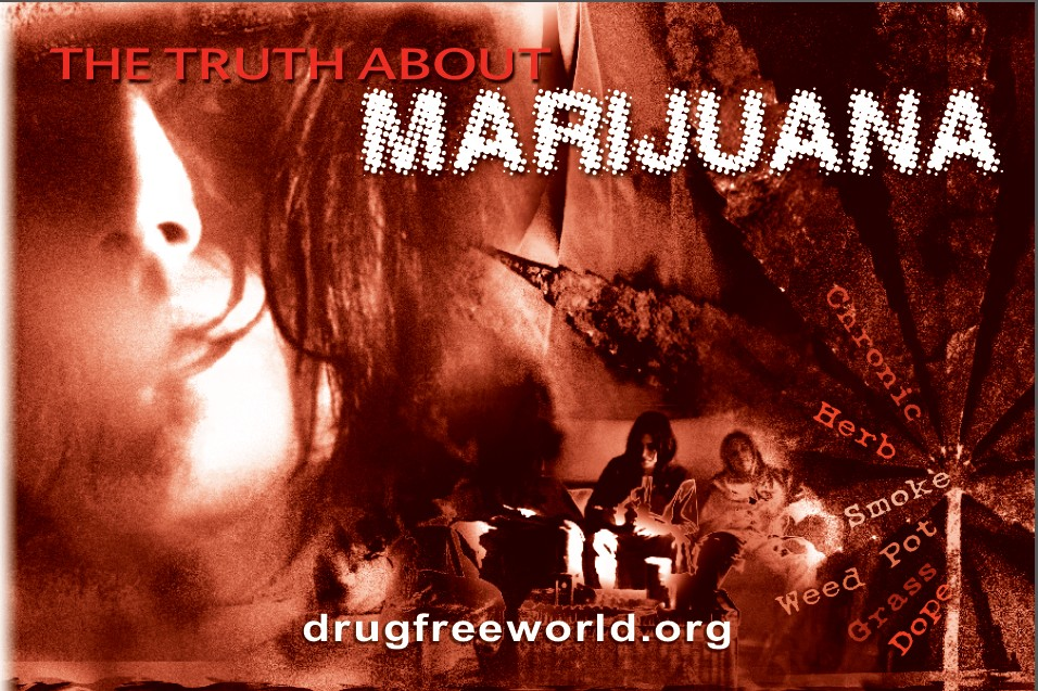1THE TRUTH ABOUT MARIJUANA