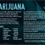 12 truth about drug booklet