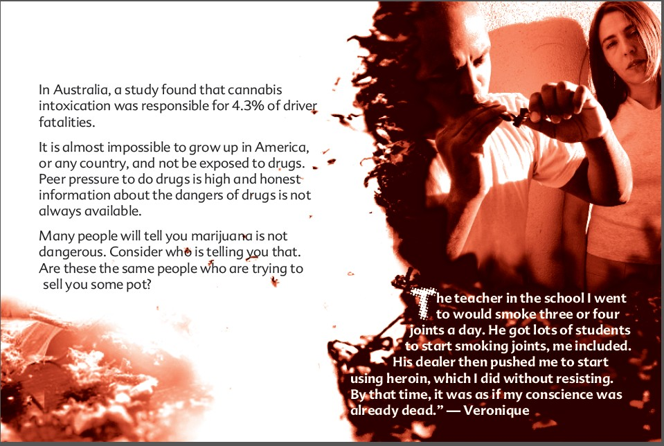 17 THE TRUTH ABOUT MARIJUANA