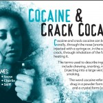 18 truth about drug booklet