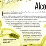 18 The truth about alcohol booklet