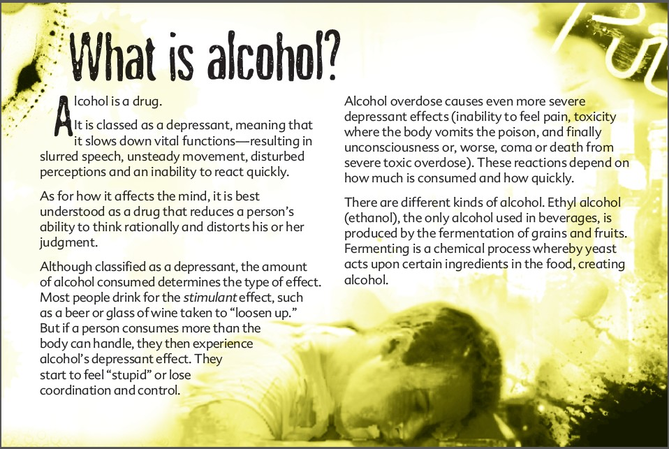 3 The truth about alcohol booklet