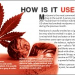 4 THE TRUTH ABOUT MARIJUANA