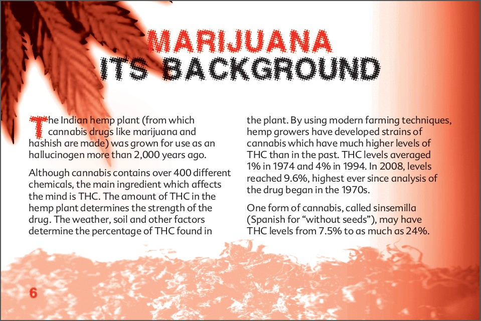 6 THE TRUTH ABOUT MARIJUANA