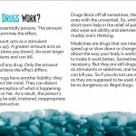7 truth about drug booklet