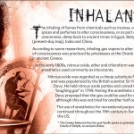 18 The Truth About Inhalants