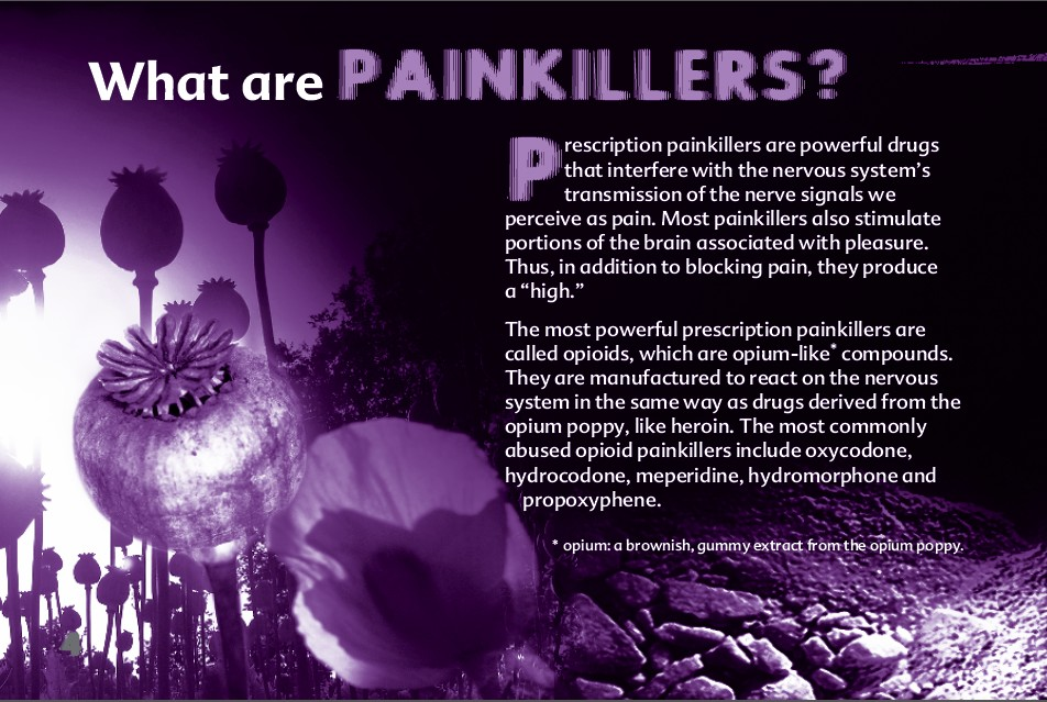 4 The Truth About Painkillers booklet