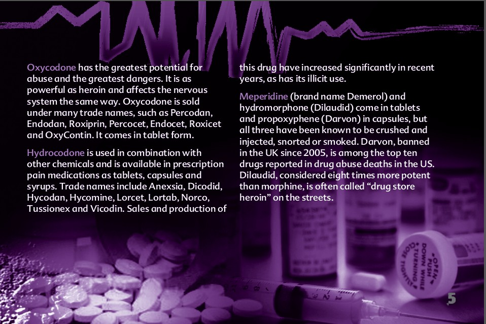 5 The Truth About Painkillers booklet