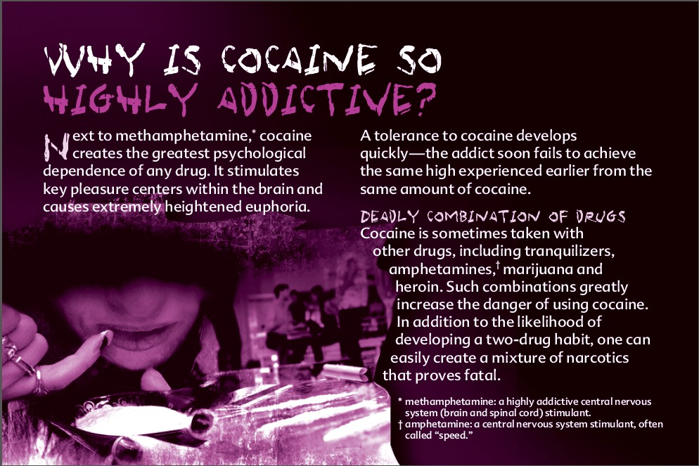 8_Truth about cocaine