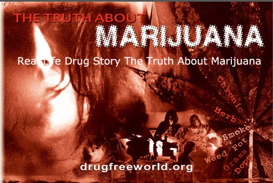 Real Life Drug Story The Truth About Marijuana